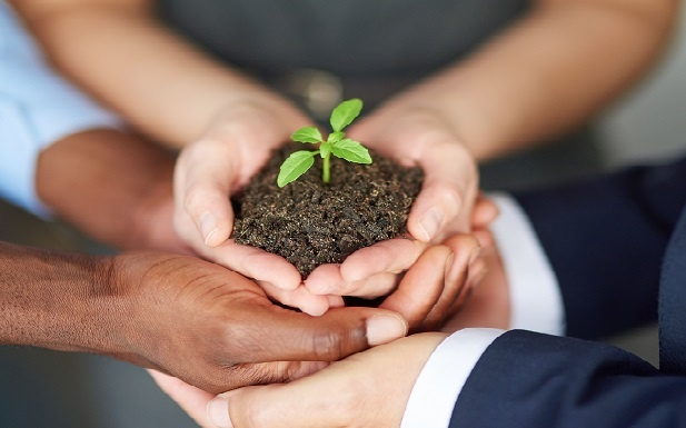 Empowering Your Team to Grow Your Business